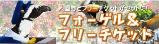 フォーゲル&フリーきっぷ