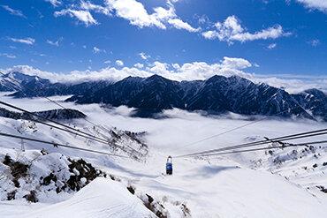 全線開業50周年 立山黒部アルペンルート雪の大谷ととなみチューリップフェア