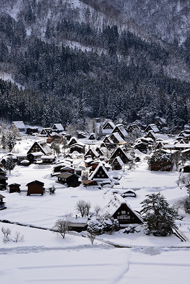 奥飛騨温泉郷、下呂温泉に泊まる 冬の白川郷・新穂高